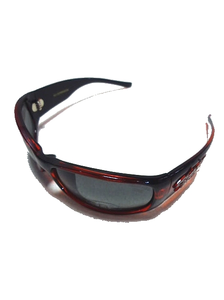 画像1: BLACKFLYS  FLY DIMENSION Polarized -RED BLK/SMK- (1)